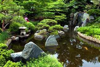 Guests Will Learn About The Design Characteristics Defining The Japanese  Garden Style And How Adaptability To Climate Can Be Achieved Through Plant  Choice.